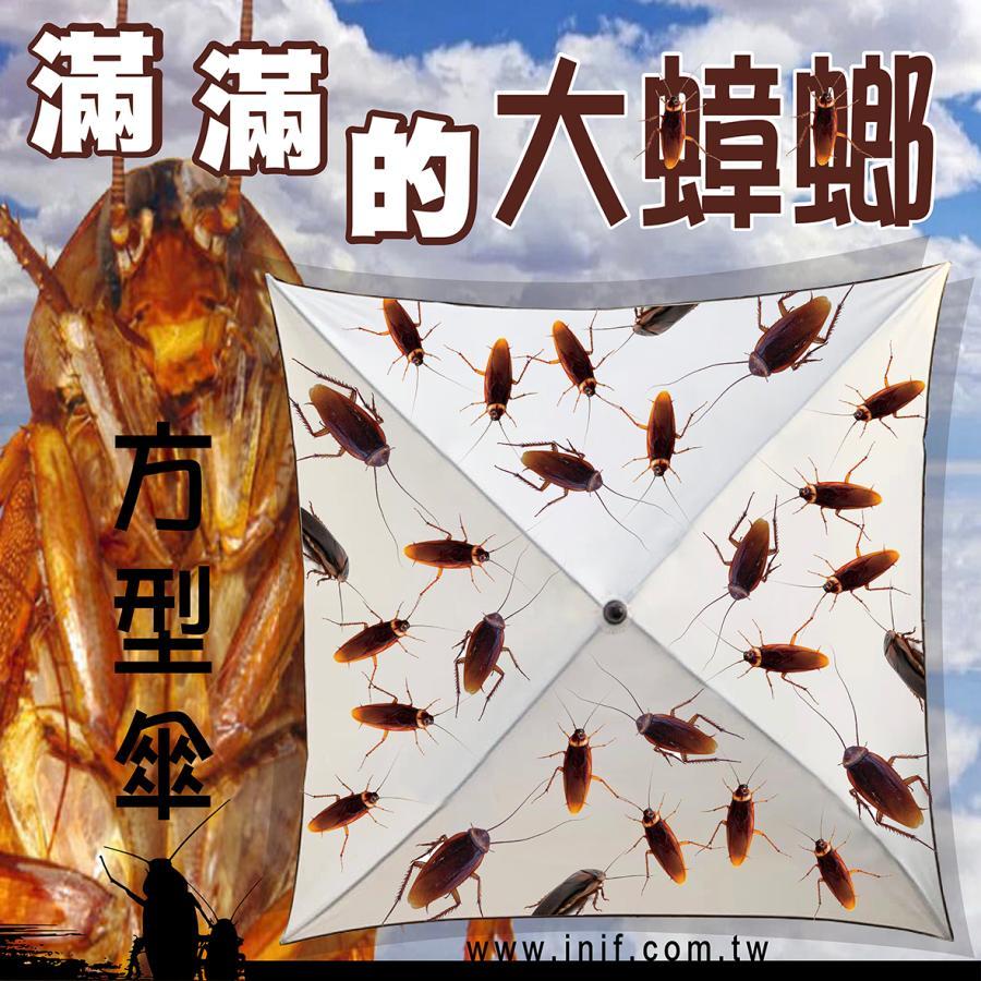 滿滿的大蟑螂傘 | inif印衣服,巧昱服飾設計有限公司