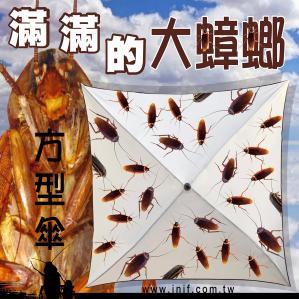 滿滿的大蟑螂傘